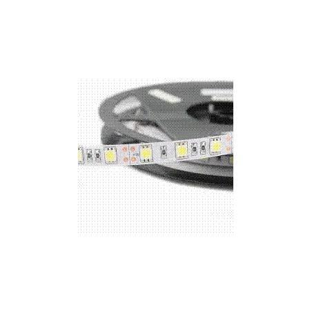 TIRA LED 60LED/M DC12 14W 6000K  5M IP65 LED303