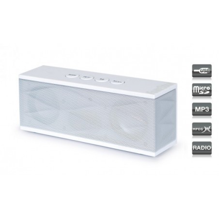 ALTAVOZ PORTATIL 2X 3W USB-MICRO-SD- RADIO-AUX RU40B